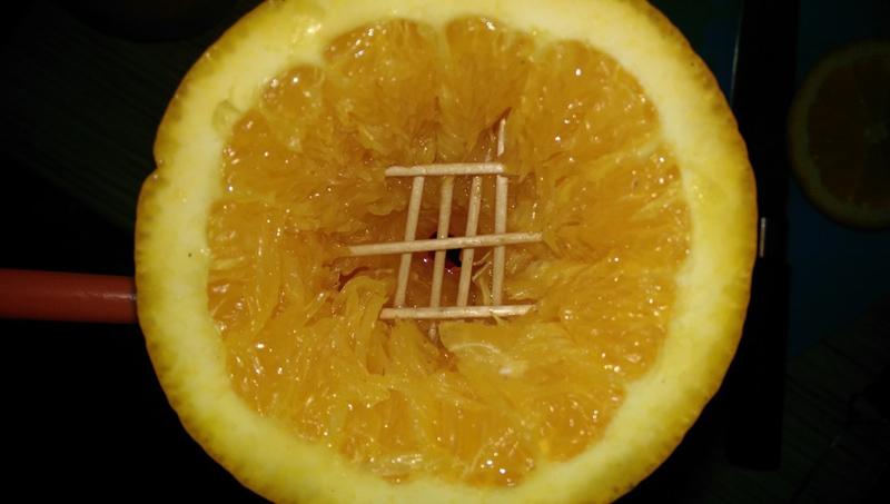 Кальян на апельсине- способ приготовления экзотического кальяна