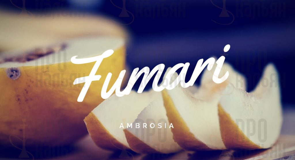 Ambrosia Fumari