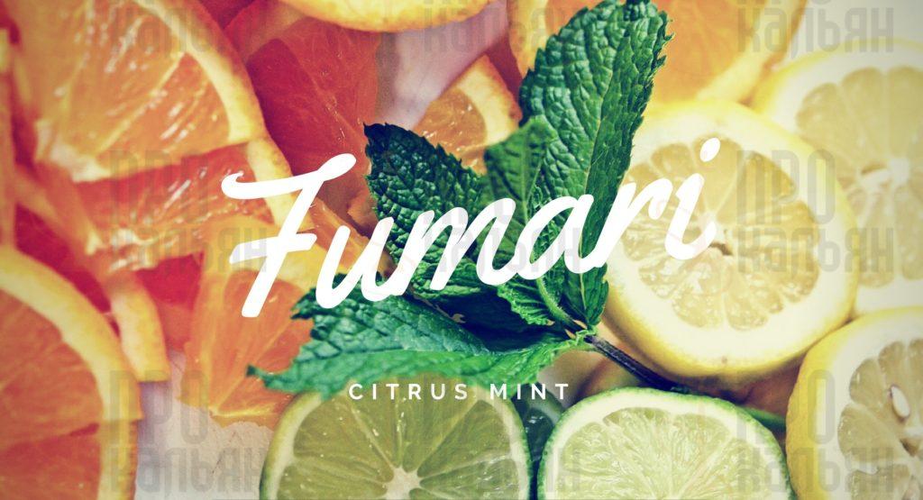 Citrus Mint Fumari