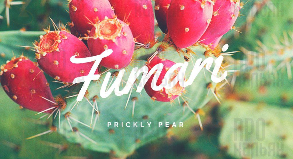PRICKLY PEAR Fumari