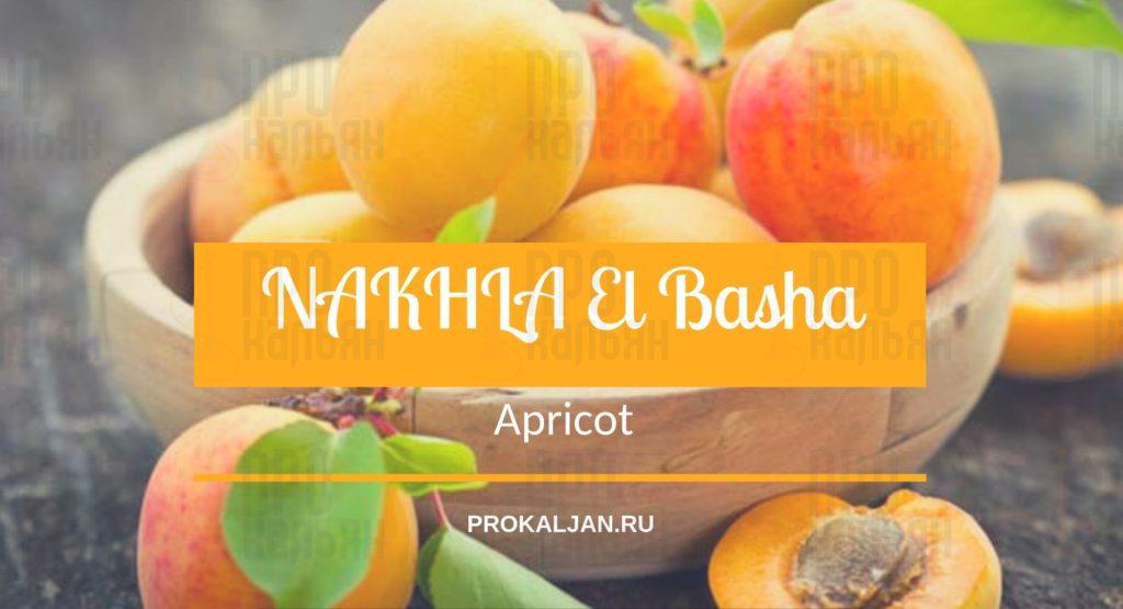NAKHLA El Basha Apricot