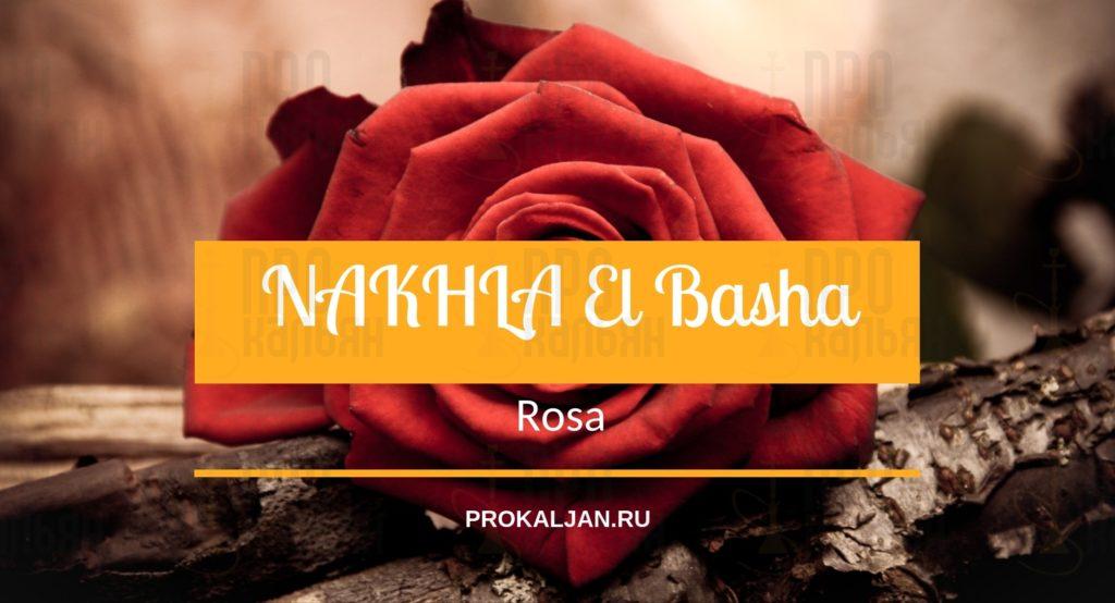 NAKHLA El Basha Rosa