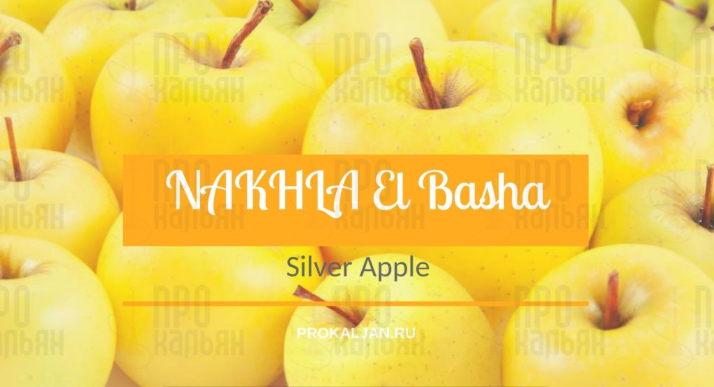 NAKHLA El Basha Silver Apple