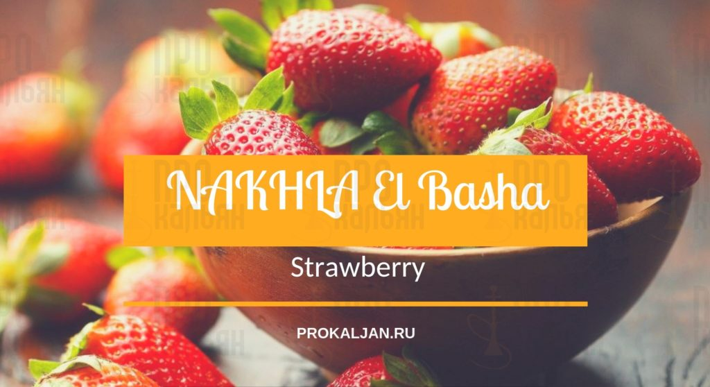 NAKHLA El Basha Strawberry