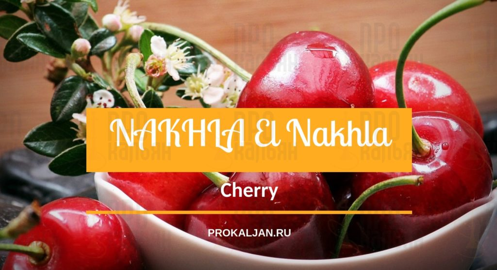 NAKHLA El Nakhla Cherry