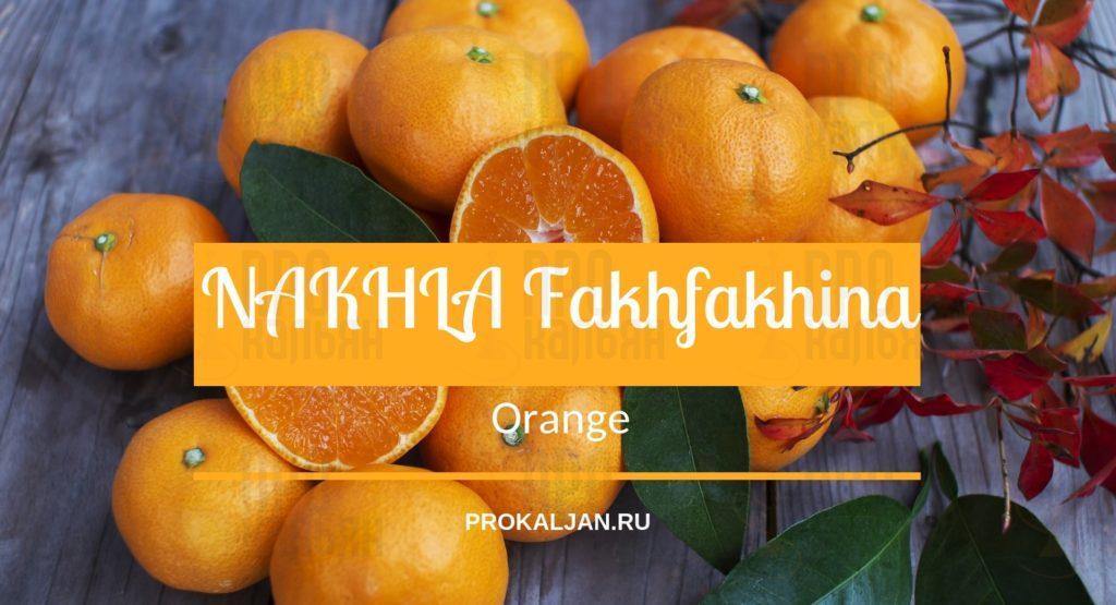 NAKHLA Fakhfakhina Orange