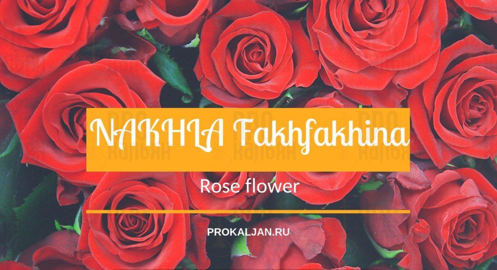 NAKHLA Fakhfakhina Rose Flower