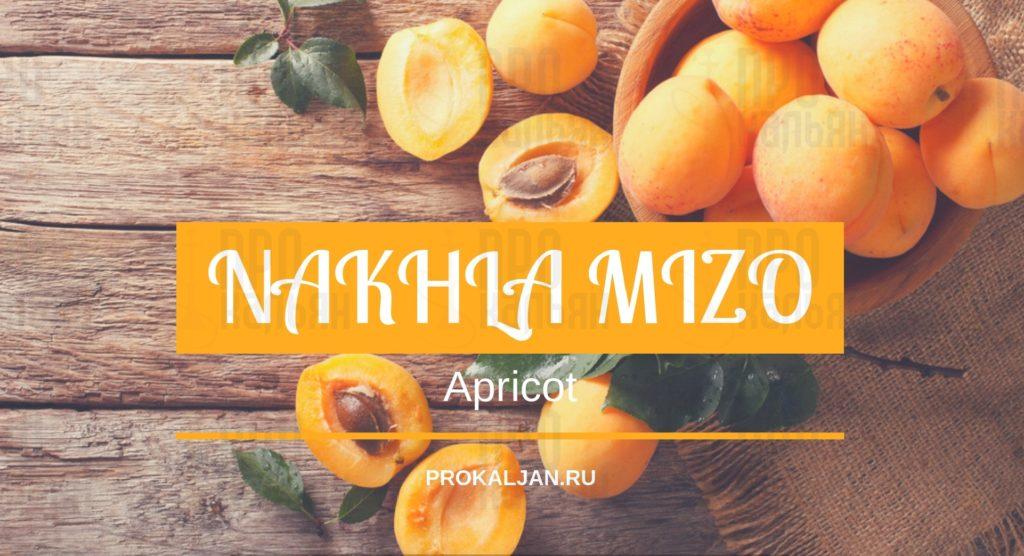 NAKHLA MIZO Apricot
