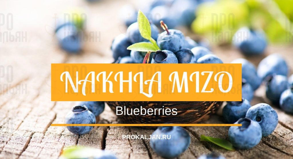 NAKHLA MIZO Blueberries