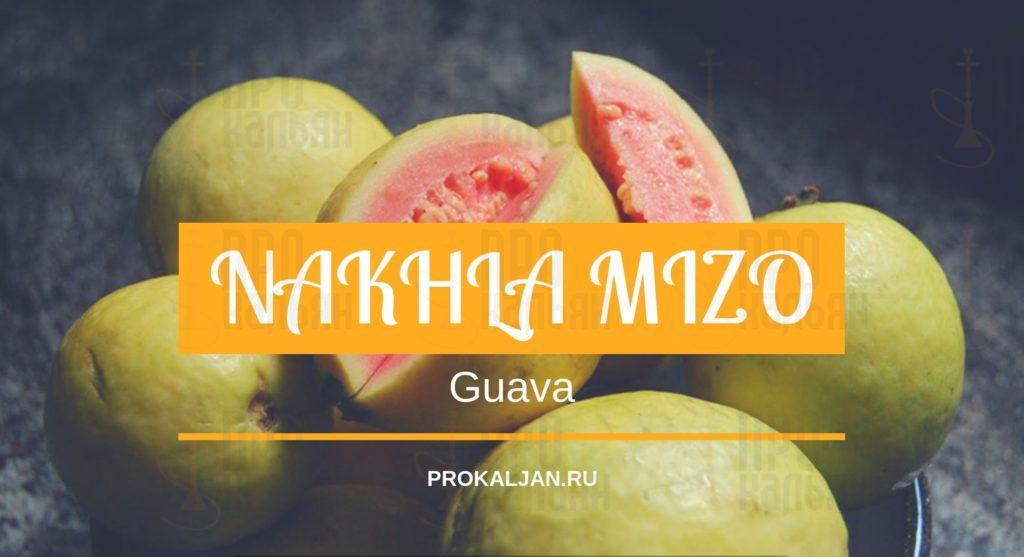 NAKHLA MIZO Guava