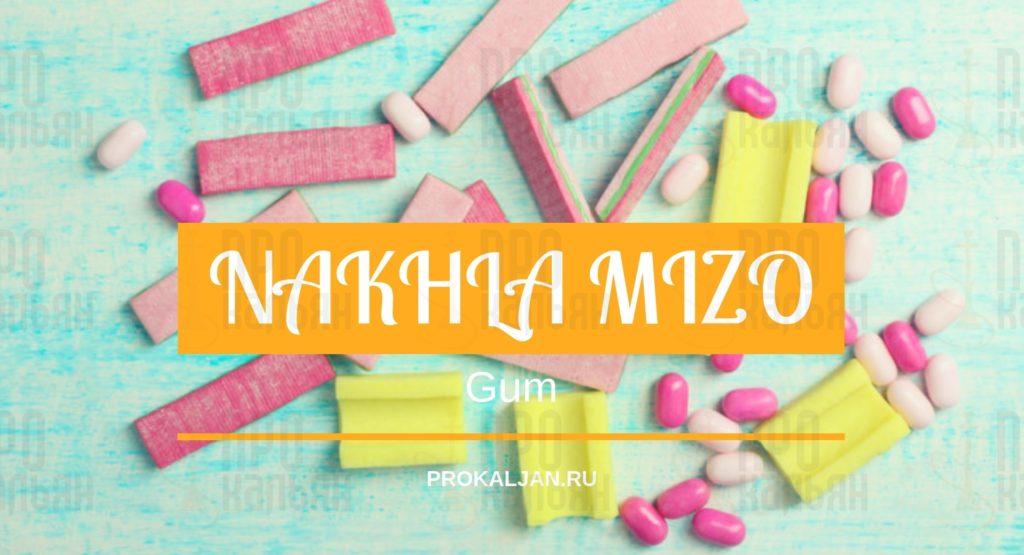 NAKHLA MIZO Gum