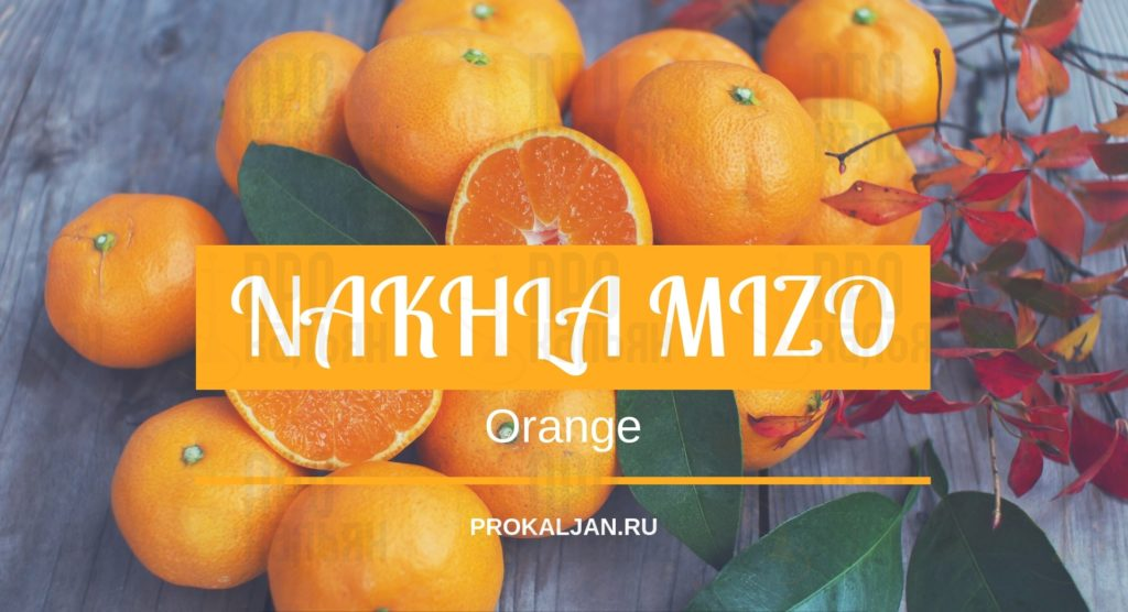 NAKHLA MIZO Orange