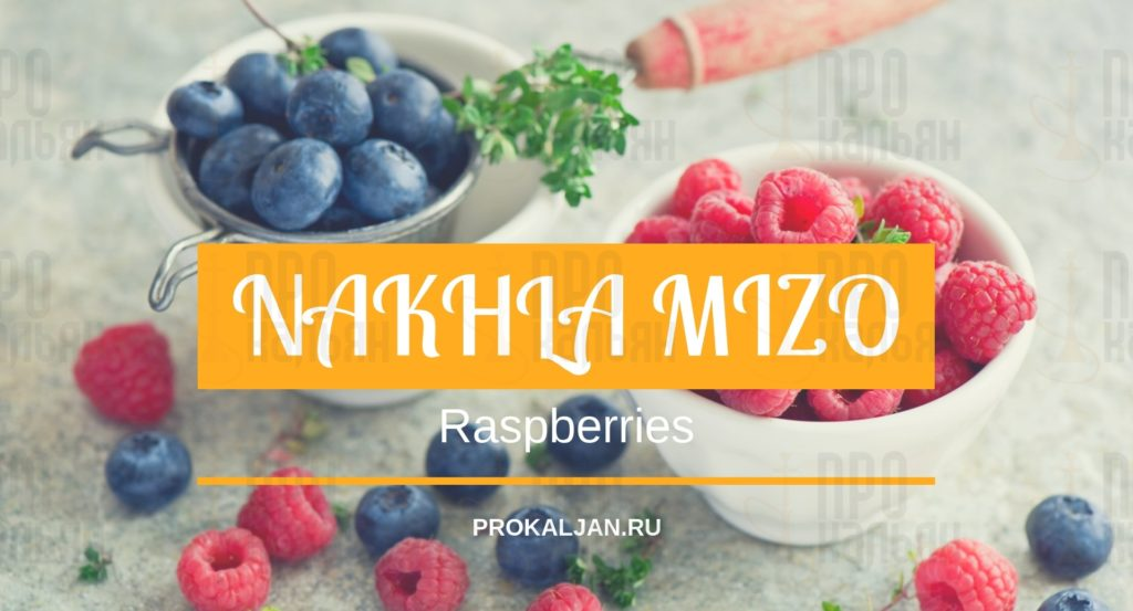 NAKHLA MIZO Raspberries