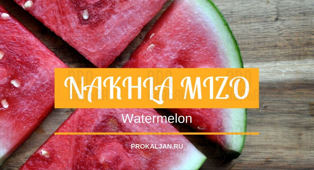 NAKHLA MIZO Watermelon