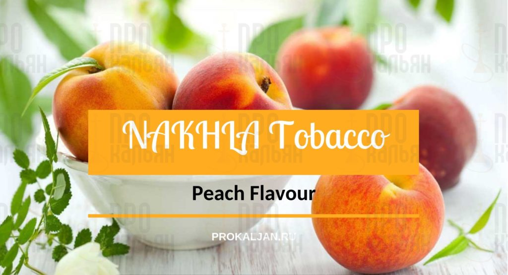 NAKHLA Tobacco Peach Flavour