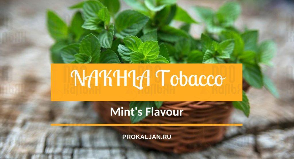 NAKHLATobacco Mint's Flavour