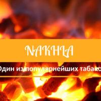 Nakhla — один из самых популярных табаков с широкой линейкой вкусов