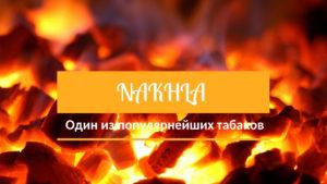 Nakhla - один из популярнейших табаков с широким выбором вкусов