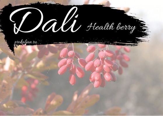 Dali - Health berry