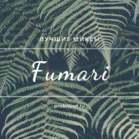 Табак для кальяна Fumari — лучшие миксы