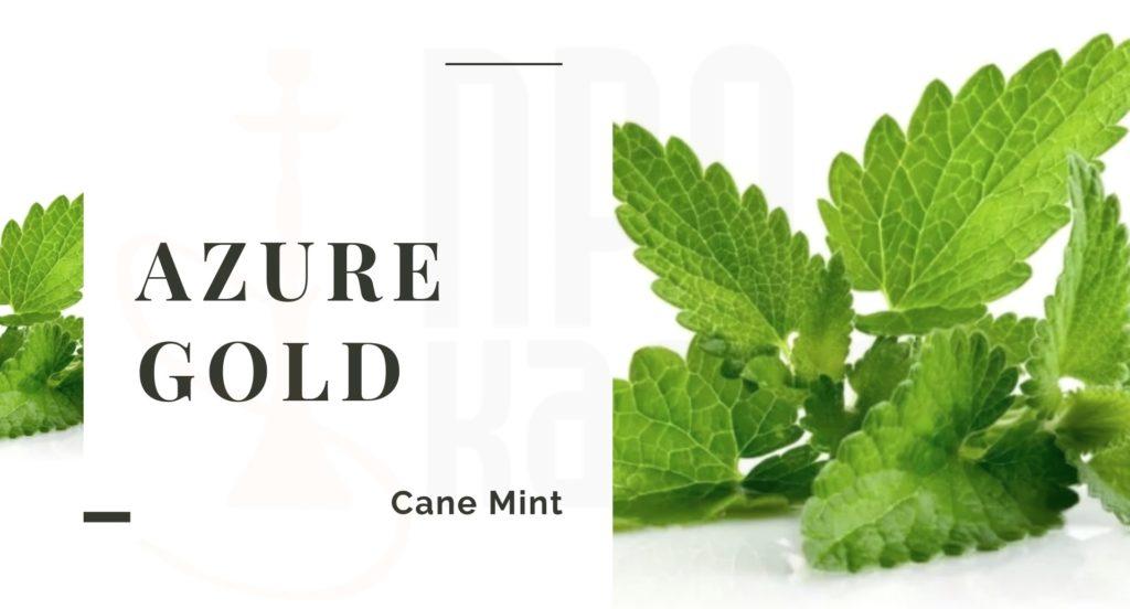 AZURE Cane Mint
