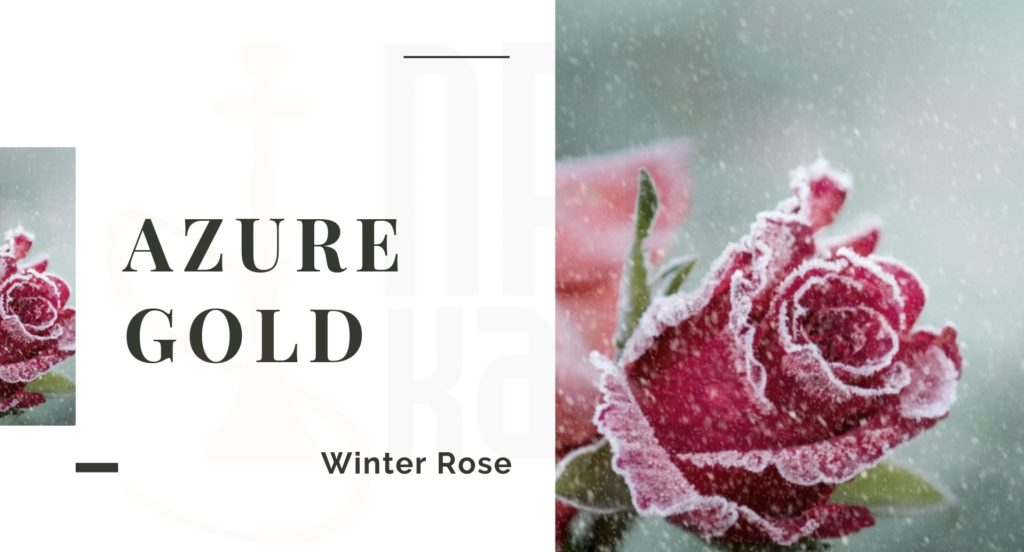 AZURE Winter Rose