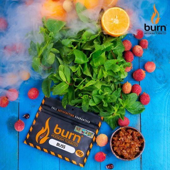 Табак для кальяна Burn BLISS