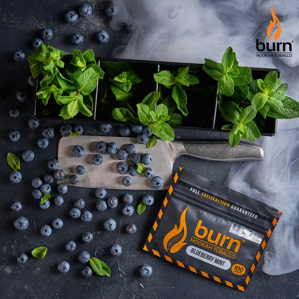 Табак для кальяна Burn BLUEBERRY-MINT