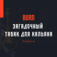 Burn — загадочный табак для кальяна: история, органолептические свойства, вкусы