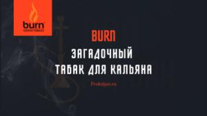 Burn - Загадочный табак для кальяна: история, органолептический свойства, советы по забивке