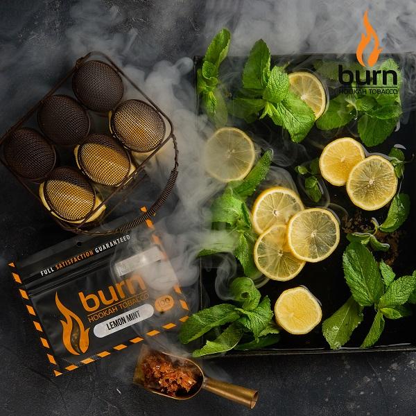 Табак Burn Lemon-Mint